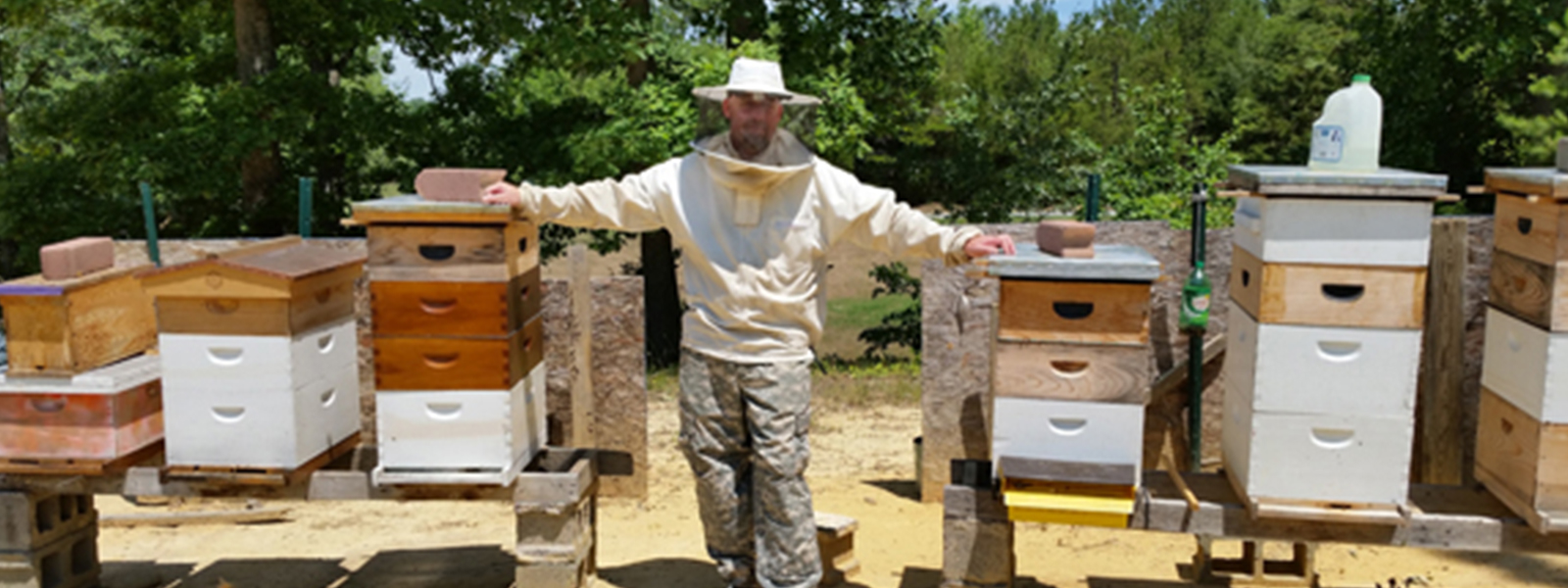 Rob Bell with the bee hives